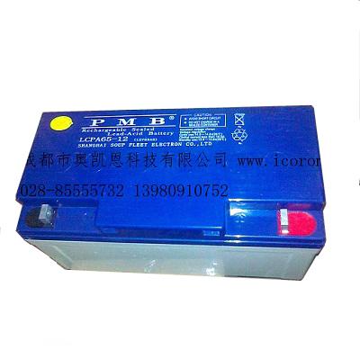 LCPA65-12蓄电池